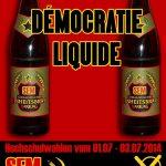 SEM Democratie Liquide
